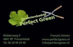 perfect_green_1.jpeg